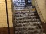 Ņujorkā pēc pamatīgām lietusgāzēm applūst metro stacija