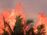 Havaju salu vulkāns. 24. maijs