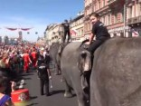 Ziloņi iziet ielās