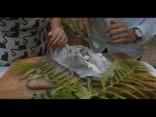 Рецепты на Лиго: Фаршированная листьями смородины треска в соляной корке