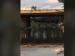 Zem Lielupes tilta applūdusi brauktuve; auto vadītāji meklē numura zīmes