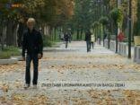 Zīmes dabā liecina par aukstu un bargu ziemu 2010.11.08