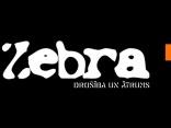 Zebra 2010.02.18